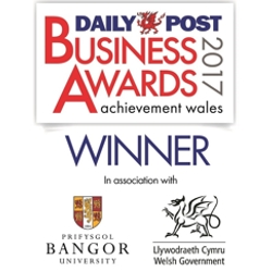 WINNERS Daily Post Business Awards 2017!
